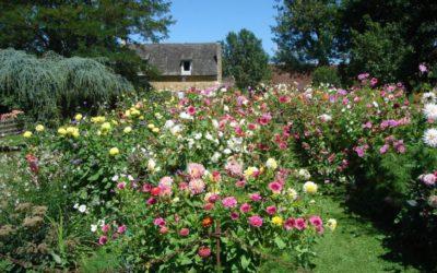 Les jardins du manoir d'Eyrgnac: Rendez-vous pour 2017